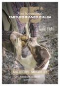Cover_Image_85ma_Fiera_del_Tartufo_Bianco_d_Alba