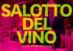 upload_Foto salotto del vino 4.jpg_0_785_600_80.jpeg.thumb