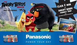201642113510182-panasonic-angrybirds-basket-banner.jpg_big