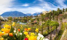 I Giardini di Castel Trauttmansdorff con splendida fioritura primaverile