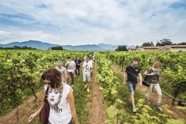 3 Festival Franciacorta Estate_ph N.Tirelli