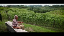 SKIN CONTACT (natural-orange wine documentary)-HD