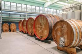 Cantina di fermentazione legno 04