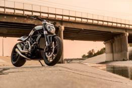 6-XDiavel by Roland Sands 25