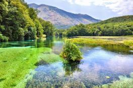 Blue-Eye-Spring-Lake