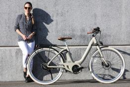 68 Wi-Bike