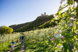 Bici e fiori 2b - Familienhotels Alto Adige