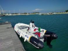 foto-4---zarmini-rib-16-con-motore-suzuki-df40a