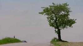 Audi A4 Avant g-tron - Footage TechDay