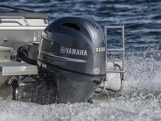 Yamaha F100 2017 (1)