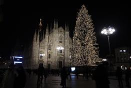 L'albero di Natale esposto a Piazza del Duomo a Milano