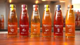 Teavana Craft Iced Teas