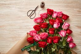 Value NSF February A Whole Trade Roses Double Dozen smalll