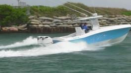 DF350A Action