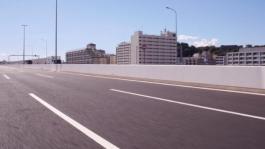 Test Drive Nissan LEAF a Tokyo