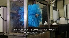 Nissan Mini Car Wash Video
