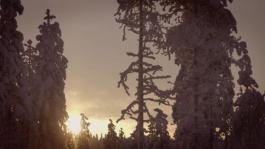 SKODA-4x4-Winter-Experience