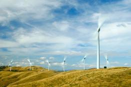 windflow-500-turbines-at-te-rere-hau-wind-farm