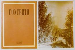 Concerto(0)