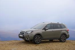 16MY FORESTER