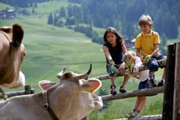 Bambini e mucca b - Familienhotels