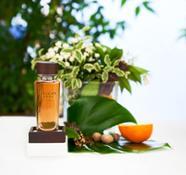 TSQC Ferragamo Parfums La Commedia 1