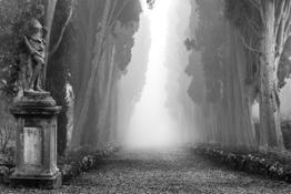 San Casciano Val di Pesa- Hallelujah Toscana © Marco Paoli