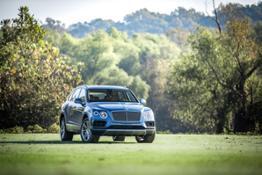 Bentley-Veneer-Hunters-6769
