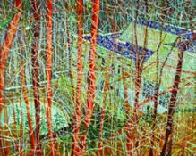 LOT 12, PETER DOIG, The Architect's Home in the Ravine, 1991, £ 14,000,000-18,000,000
