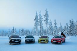 SKODA Lappland 005