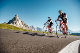Sport - Road Bike