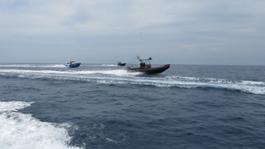Suzuki Fishing Team