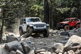 Jeep Rubicon Trail  (21)
