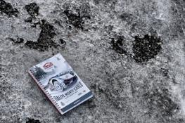 Rallye Montecarlo Preview