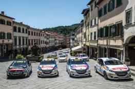 Rally 208-004