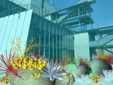 UnexpectedGrowth coralsHealthy