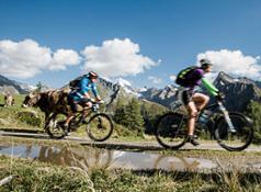 biketour - Amonti & Lunaris a
