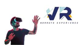 VR EXPERIENCE