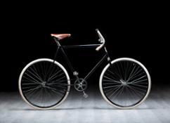 slavia-bike-view-side