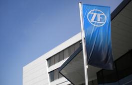 ZF Immagine Flag
