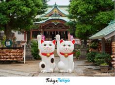 Tokyo BIT