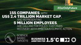 1-5 c ceo-climate twitter cards - for companies companies - stats