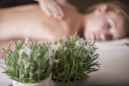 Massaggio rilassante con olio di stella alpina altoatesina by Luca Meneghel