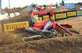 T. Gajser action