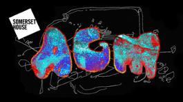 agm-wf-2