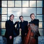 Trio di Parma da SX Ivan Rabaglia vl - Alberto Miodini pf - Enrico Bronzi vc - 2018-1 credit Francesco Fratto