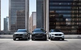 262454 Volvo Cars SUV line-up