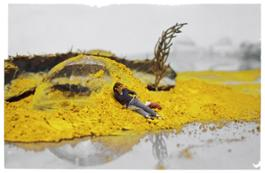 2 Loris Cecchini Myopia's Meridien cadmiumyellowpowderscape 2007 Courtesy Loris Cecchini Studio e Galleria Continua
