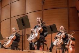 Violoncelli © Studio Hänninen