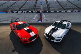Mustang GT 500 Carbon Fiber Parts 01